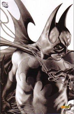 Superman Batman # 13 Variant